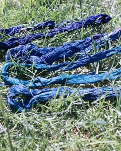There we go. After a few minutes in the air, the greenish skeins turned blue!