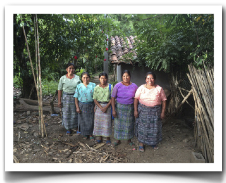 5 women of natural dye project frame